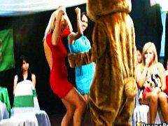 on, bear, group, dance, babes, naked