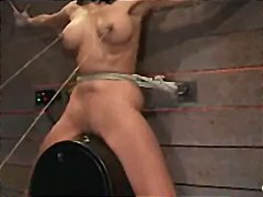 bound bdsm, bdsm domination, sybian, hogtied bondage, tied
