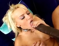 holly wellin,  hard, inter-ras, babe