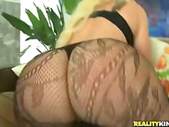 big-butt, stocking, madison, big-boobs, bootylicious, white, big-tits, kelly, fishnet, rose, kelli, kelli staxxx