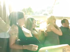 swingers, hardcore, group, oral, sex-toys, chubby, stripper, babe, blowjob