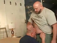 oral, gay, sucking, bear
