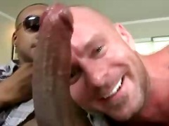 homosex, tatoveringer, blowjobs, pik