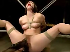 Girl mouthgag tied to woodframe getting her pussy fingered ass pussy fucked with dildo by master on a desk ...